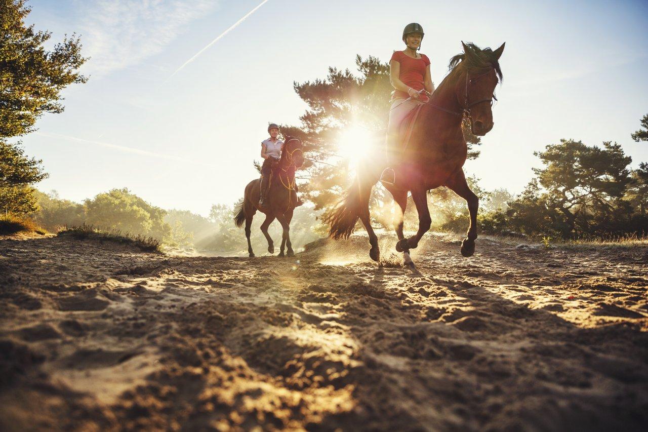 Outdoor en Actief in Drenthe